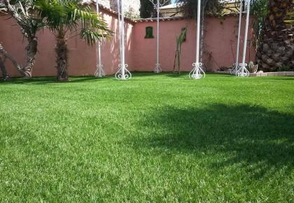 Extérieur et jardin avec du gazon synthétique